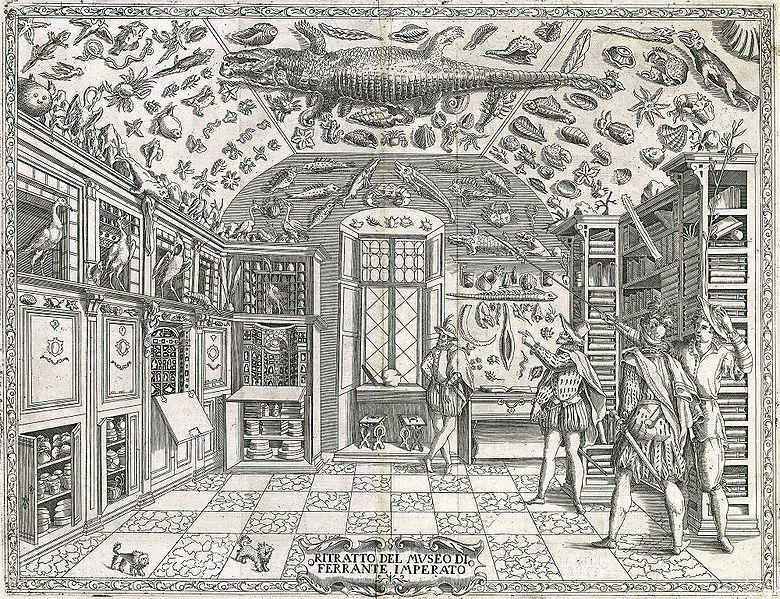 Gabinete de curiosidades, Ferrante Imperato